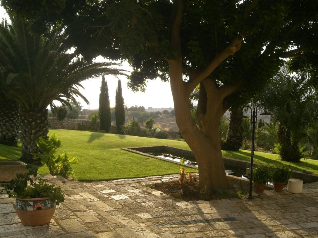 eritrina tramonto